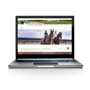Amazon Horses - website responsive cu temă adaptată