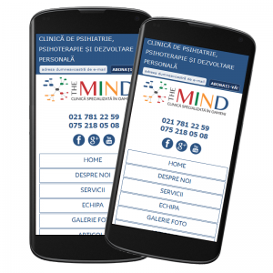 Adaptare responsive website TheMind.ro