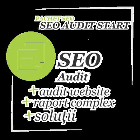 Audit SEO site